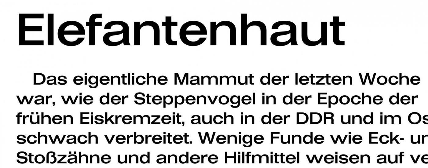 Z - Schrift Folio.jpg